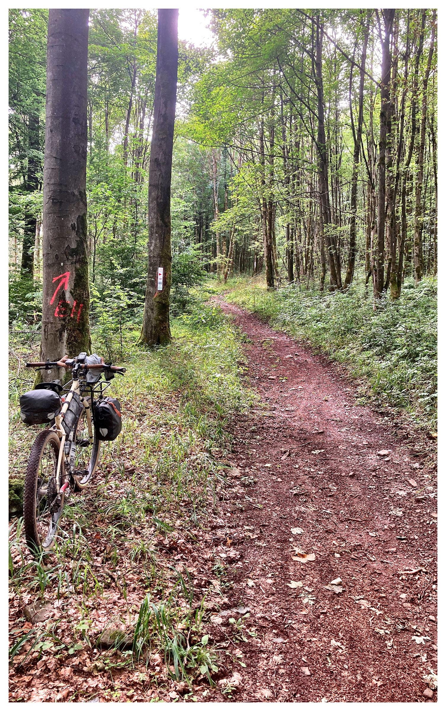 2020_09_03-132209-Hochrhoener-Trail
